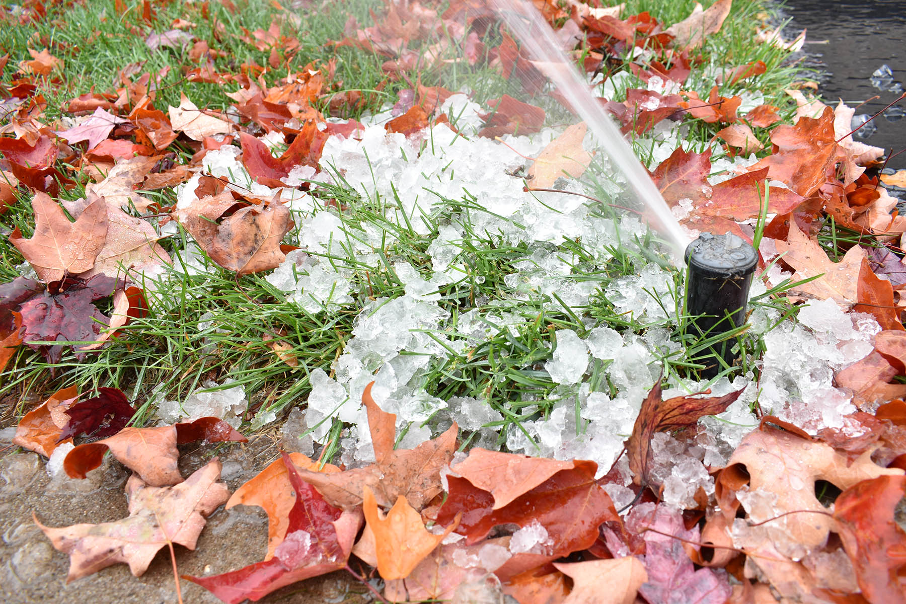 Monroe NJ irrigation winterization blowout